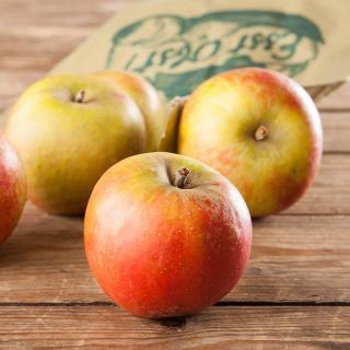 Apfel Verarbeitung