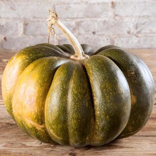Kürbis Muskat de Provence ca.5kg