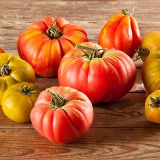 Tomaten Fleisch