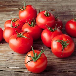 Tomaten Tica/Rica