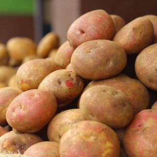 Kartoffeln bunte Mischung