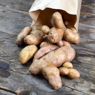Kartoffel La Ratte