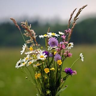 Wild-Blumenstrauß 15cm