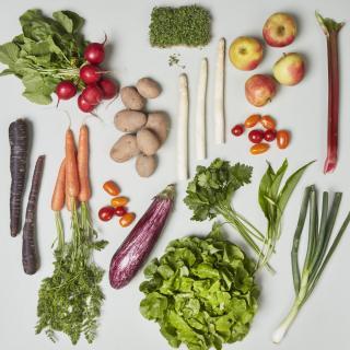 Gemüse-Spezial-Box (vegan)